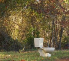 toilet-in-woods